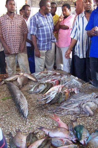 Fischauktion auf dem Darajani-Markt