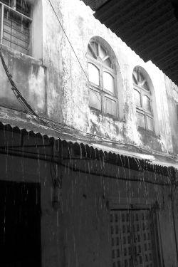 Zanzibar Rain