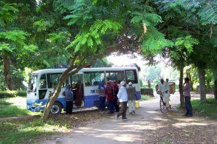 SUZA-Bus