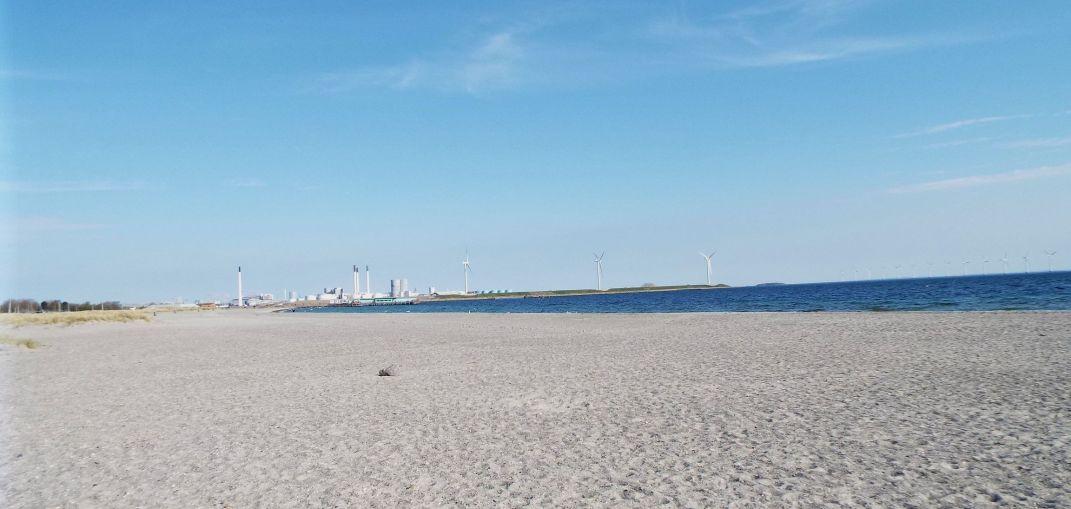 am Amager Strand