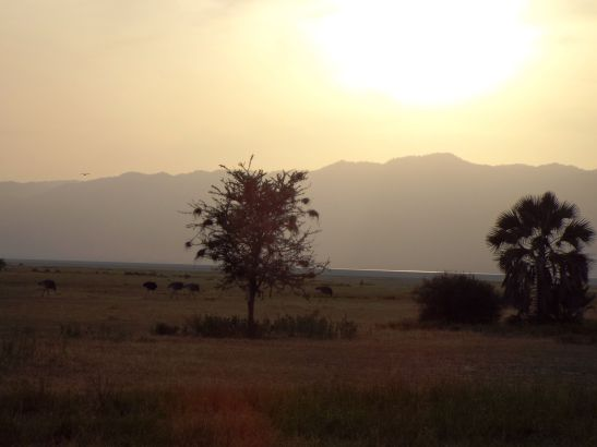Sonnenuntergang am Lake Manyara