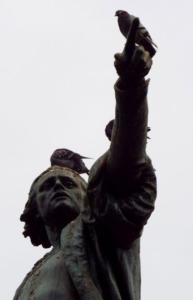 Oh Shit - Kolumbus mit Taubensch***