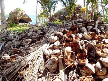 Kokosnussfriedhof