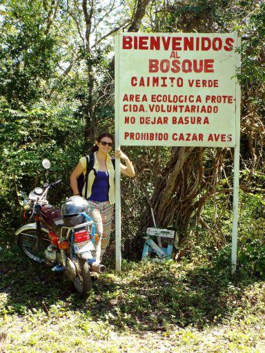 Kleines Wandergebiet Caimito Verde