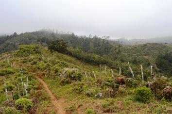Bei Paraguas