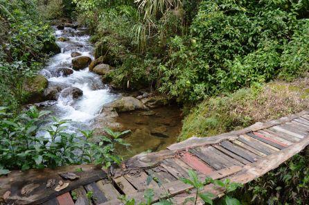 Río Los Tablones