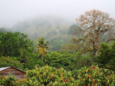 Der Hügel Loma Quita Espuela im Nebel