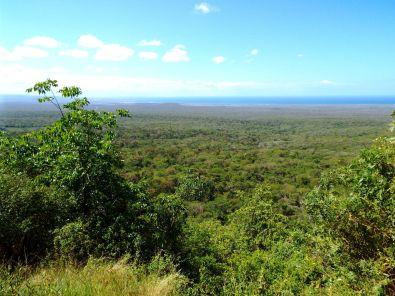 Blick bis ans Meer bei Cabo Rojo