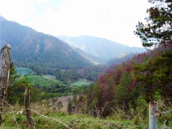 Auf dem Weg zu den Aguas Blancas