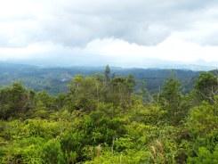 Blick in die Zentralkordilleren und Ebano Verde