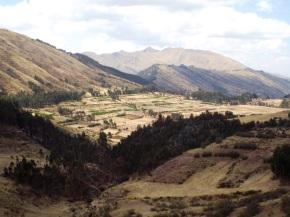 Blick von Pukapukara ins Umland