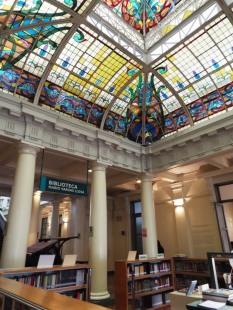 Mario-Vargas-Llosa-Bibliothek