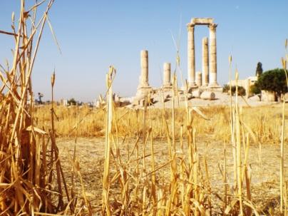 Amman (3)